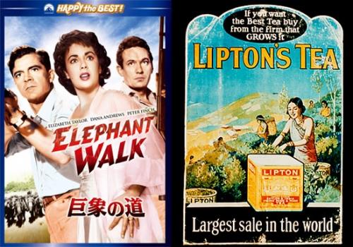 映画で楽しむ英国紅茶の世界② ~「巨象の道」~